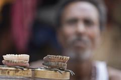 Doctor, doctor (alfienero) Tags: dentist doctor teeth india kolkata people portrait asia reportage market