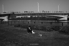 _DSF3948_ORIGINAL-FORMAT (izumi masakazu) Tags: monochrome streetsnap flickr girl dog river grass fence water walk sky plant 少女 女の子 犬 橋 河 川 芝生 フェンス 水 散歩 空 植物 木 樹 草 bridge
