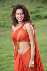 Indian Actress DIMPLE CHOPADE Hot Photos-Set-1 (37)