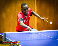 BATTS1706JSSb -363-105 (Sprocket Photography) Tags: batts normanboothcentre oldharlow harlow essex tabletennis sports juniors etta youthsports pingpong tournament bat ball jackpetcheyfoundation