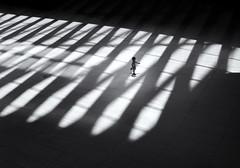 tiny in a huge world (marianna_a.) Tags: newyork nyc oculus light shadow pattern child kid running monochrome blackandwhite mariannaarmata p1370338 panasonic lumix gh4