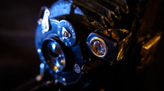 DSCF1811 (bc-schulte) Tags: xt20 fujinon 1650mm polaroid nahlinse 10 laack rathenow kamera retro macro analog objektiv