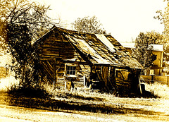 Old Barn (Eyellgeteven) Tags: barn farm farming rustic rural rustyandcrusty rundown dilapidated old used ugly decay abandoned forgotten fallingapart overgrown beatup crumbling modified processed sepia farmland farmbuilding building brokendown weathered oldbuilding broken antique wooden wood barnwood junk eyellgeteven neglected retired