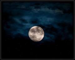 Full Summer Moon (Ernie Misner) Tags: f8andhowl fullmoon moon moonphotography erniemisner washington tacoma firemanspark nikond810 d810 lightroom nik topaz capturenx2 cnx2 80400