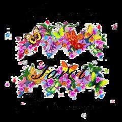 Acuario Amor Semana | 10 al 16 de Julio (tarotsombreromagico) Tags: acuario