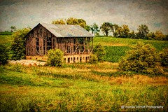 Time is going to win in the end (Thomas DeHoff) Tags: digital art texture painting barn rural farm green sony a700
