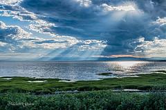Pied-de-vent (MichelGuérin) Tags: 2017 canada michelguérin nature nikond500 notredameduportage paysage québec tamron tamronsp1530mmf28divcusd pieddevent ©