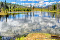 Twin Lake (Gary Grossman) Tags: twinlakes wallowawhitlmannationalforest garygrossmanphotography nationalforest wallowamountains mountains elevation high highelevation summer reflection landscape clouds lake water pacificnorthwest oregon rural country