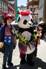 patriotic panda, Fourth of July (vhines200) Tags: sanfrancisco 2017 july4 fourthofjuly patriotic panda cowboyhat americanflag lei chinatown americana