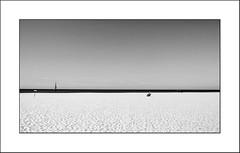 Images Singulières du Portugal #20 (Napafloma-Photographe) Tags: 2017 algarve bandw bw bateau catégorieprojet géographie landscape métiersetpersonnages natureetpaysages objetselémentsettextures paysages personnes portugal techniquephoto transports vacances blackandwhite monochrome napaflomaphotographe noiretblanc noiretblancfrance paysage photographe plage poubelle province vilamoura pt