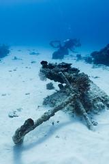 Anchor Bommie || Lady Elliot Island (David Marriott - Sydney) Tags: queensland australia au anchor qld lady elliot island great barrier reef scuba diving fotofrenzy canon collecctive ikelite