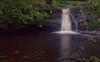 Blackling Hole Waterfall HDR (Dr Nigel) Tags: northeast england panasonic lumix dmcfz8 hamsterley forest hamsterleyforest countydurham beck stream water waterfall hdr nd8 nd4 cpl polariser circularpolariser blacklingholewaterfall spurlswoodbeck