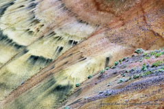 Painted Abstract (Gary Grossman) Tags: paintedhills abstract johndayfossilbeds garygrossmanphotography geologicallayers nationalmonument natural erosion mineraldeposits landscape pacificnorthwest publicland rural country oregon centraloregon