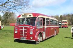 Superb Beadle Leyland coach. (steve vallance coach and bus) Tags: gfn273 beadleleyland eastkent southeastbusfestival detling