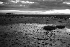 Southport Coast mono (paul_taberner_photography) Tags: southportpier southport southportbeach blackwhite blackandwhite