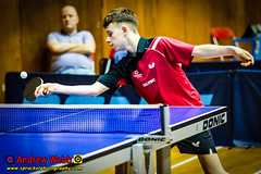 BATTS1706JSSb -498-140 (Sprocket Photography) Tags: batts normanboothcentre oldharlow harlow essex tabletennis sports juniors etta youthsports pingpong tournament bat ball jackpetcheyfoundation londontabletennisacademy