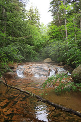 Oliverian Brook Trail (Corey T. Burns) Tags: green mountains newhampshire wilderness beautiful hiking hike tranquel secluded