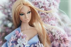 IMG_9758 (Evgenia Ariel) Tags: poppy parker groovy galore integrity toys fahion dolls