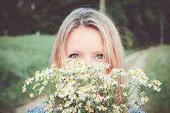 Chamomille (claudiabrtn) Tags: flower flowers blonde light softlight lighting chamomille