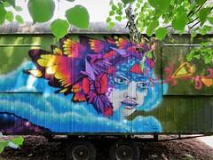 Huascaya / Pinguinstraat - 20 jun 2017 (Ferdinand 'Ferre' Feys) Tags: gent ghent gand belgium belgique belgië streetart artdelarue graffitiart graffiti graff urbanart urbanarte arteurbano huascaya