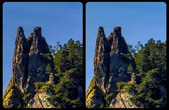 Das Hamburger Wappen 3-D / Stereoscopy / CrossEye / HDRaw (Stereotron) Tags: sachsenanhalt saxonyanhalt ostfalen harz mountains gebirge ostfalia hardt hart hercynia harzgau blankenburg thale teufelsmauer rocks felsen forest woods outback backcountry crosseye crosseyed crossview xview cross eye pair freeview sidebyside sbs kreuzblick 3d 3dphoto 3dstereo 3rddimension spatial stereo stereo3d stereophoto stereophotography stereoscopic stereoscopy stereotron threedimensional stereoview stereophotomaker stereophotograph 3dpicture 3dglasses 3dimage hyperstereo twin canon eos 550d yongnuo radio transmitter remote control synchron tonemapping hdr hdri raw hamburgerwappen