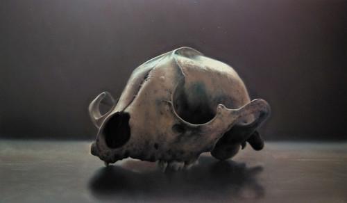 Ricardo Martinez_Skull Study