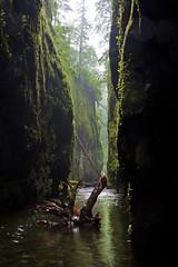 Oneonta Gorge (Jared Wilson) Tags: oneonta gorge columbia river portland oregon moss