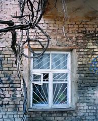 May17M7ii_400VC-0004 (dmitriy.marichev) Tags: windows mamiya portra kodak color mamiya7ii mamiya7 67 mamiya780mmf4 mamiyan80mmf4 city style old architecture film analog kiev ukraine street kodakfilm kodakportra400vc120 120mm dmitriymarichev