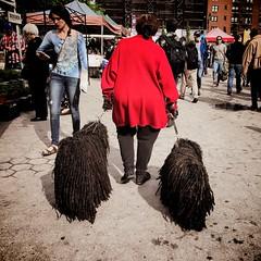 2017-05-20-5_map (whimcollective2) Tags: dogs flatirondistrict greenwichvillage manhattan newyork newyorkcity nyc thevillage unionsquare unionsquaregreenmarket unionsquarepark unitedstates