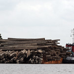 Transporting logs thumbnail
