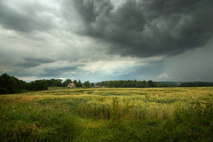 Storm Clouds over Swiss Cottage (aveyardphotography) Tags: storm clouds swiss cottage castle howard howardian hills north yorkshire red roof tiles rural crop wheat farmland andy aveyard canon landscape rain thunder lightening dark moody trees sky cloudy light nature natur colour colourful color