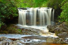 Mountain State (popago) Tags: nature creek water stream waterfall forest river westvirginia tuckercounty