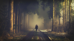 My Heroine (der_peste (on/off)) Tags: forest foggy misty fog mist timberland woodland woods trees dark haunted mood moody atmosphere woman photographer