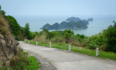 Landscape of Cat Ba Island in North of Vietnam (phuong.sg@gmail.com) Tags: asia catba day destinations dreamy famousplaces forest geological green gulfoftonkin halongbay heritage holiday iconic idyllic indochina island karst landmarks landscape limestone locations mountain natural nature ocean outdoors rock scenery scenic seascape southeastasia stone tour tourism travel unesco vacations vessel vietnam vietnamese view viewpoint wilderness