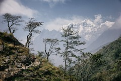 Shringi Himal, Manaslu Circuit (beudii) Tags: shringi himal manaslu circuit nepal himalaya trekking asia asien wandern hiking outdoor landscape landschaft berge mountains trees bäume wolken clouds frühling spring peak gipfel summit gebirge mountain