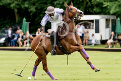 © 2017 Photographs by Robert Piper- All Rights Reserved 707 _ (Ham Polo Club) Tags: jacaranda challengematch vendetta 2017the london polo club tw107ah england gbr