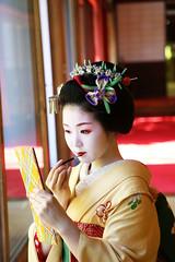 Maiko_20170528_58_22 (kyoto flower) Tags: eishoin temple tomitsuyu kyoto maiko 20170528 舞妓 栄摂院 富津兪 京都 kazuhikowakita