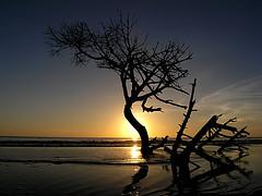 Parco dell'Uccellina (Itinerari Camper) Tags: travel camper viaggi itinerari italia italy toscana maremma beach