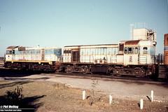 1645 J102 H3 Forrestfield 18 January 1981 (RailWA) Tags: railwa philmelling westrail j102 h3 forrestfield