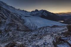 9529 Glaciar Río Túnel Inferior  (Patagonia Argentina) (Andrea Torselli) Tags: andrea torselli chalten argentina patagonia glaciar