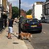 Milner Street (jovike) Tags: animal dog espe london street woman