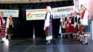 Bulgarian folk dance group