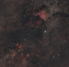 The Cygnus Cloud (DeepSkyDave) Tags: astrophotography astrofotografie astronomy astronomie night sky nacht himmel stars sterne deepsky cosmos kosmos natur nature long exposure langzeitbelichtung low light wenig licht canon eos 6d astrodon mod bright colors wide field 100mm lens