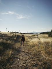 (Nicco__) Tags: estate quasiestate summer verano primavera oradorata goldenhour tramonto campi fields grano trigo chianti chiantishire niccolòlandi niccololandi olympus omd vsco ragazza girl model walk cammino camminare schiena back espalda camino caminar andar