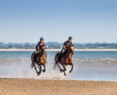 Levitation (oxfordwight) Tags: iow appley sands riding horse horses sea gallop wight