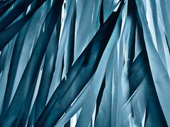 fluttering (losy) Tags: blue wind fabric abstract losyphotography fluttering marlenedietrich derblaueengel