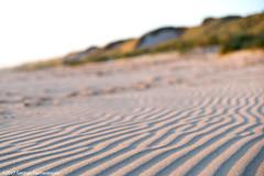 The dunes.. (George Pachantouris) Tags: holland netherlands sunset sunrise egmond aan zee sea ocean lighthouse vacation holiday summer travel