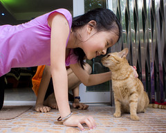Kids and Cat 1 (C & R Driver-Burgess) Tags: boy girls friends schoolage pink top blue play kiss cat kitten ginger touch nose stroke caress gentle together orange love affection tender child children kids