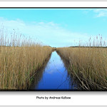 Andreas Kalbow Landschaft 2017.05.24 Fischland Darß (14) thumbnail