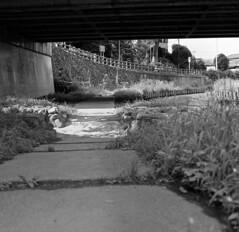 Path under the bridge (odeleapple) Tags: zenza bronica s2 nikkorp 75mm neopan100acros film monochrome bw path bridge